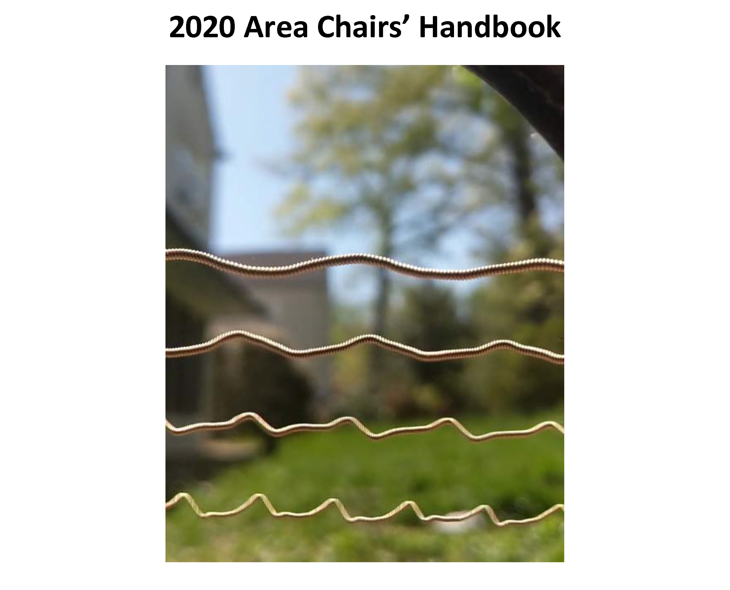 2020 Area Chair's Handbook cover