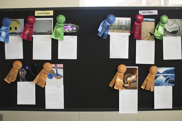 Photo Contest Winners and Ribbons